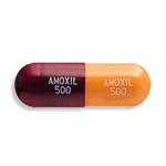 Amoxil Canadian Pharmacy